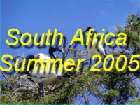 Do come and see the wild-life, desert scenery, and beautiful beaches that we saw during Febuary 2005 (Summertime in South Africa)